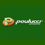 Paulucci - Quarter